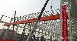 Nuclear Power Crane-Weihua Cranes