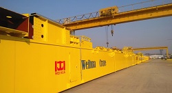 Low Clearance Overhead Crane - Weihua Cranes