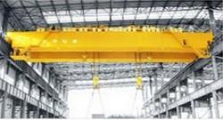 Power Plant Overhead Crane Purchase | Weihua Cranes
